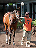 Warm Glow in the paddock before The Rosenna Stakes at Delaware Park on 8/17/13
