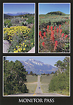 California High Country 4x6 Postcards by Frank Balthis