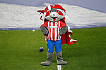 Atletico de Madrid's pet Indi during La Liga match. April 4,2017. (ALTERPHOTOS/Acero)