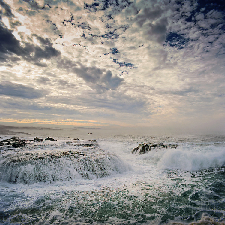 Pacific Waves crashing over sea rocks at dawn, mendocino California