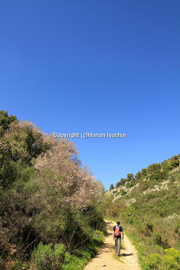 Israel, Upper Galilee, hiking in Wadi Amud