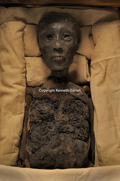 mm7864; 18th Dynasty; New Kingdom; the Egyptian Museum; Cairo; Egypt, Tut, Tutankhamun, Mummy
