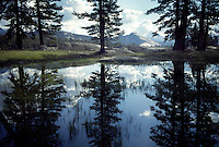 20050730 -- .Michael McCollum.Tuolumne Meadows, in spectacular Yosemite National Park.