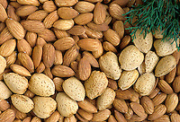 Almonds with evergreen
