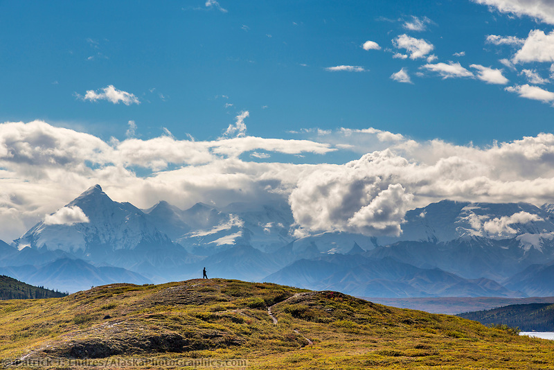 Hiker pauses to view the Alaska Range mountains in Denali National Park, Alaska.