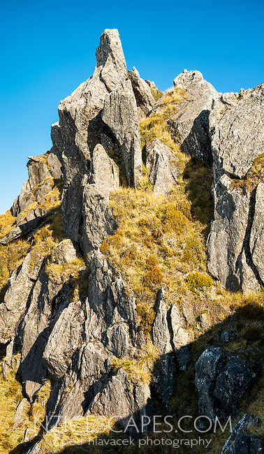 Rock formations in high country, Westland Tai Poutini National Park, UNESCO World Heritage Area, West Coast, New Zealand, NZ