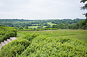 View of Sussex Weald from Tidebrook Manor, East Sussex, early June.