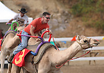 Cole Chase races at the International Camel Races in Virginia City, Nev., on Friday, Sept. 9, 2011. .Photo by Cathleen Allison