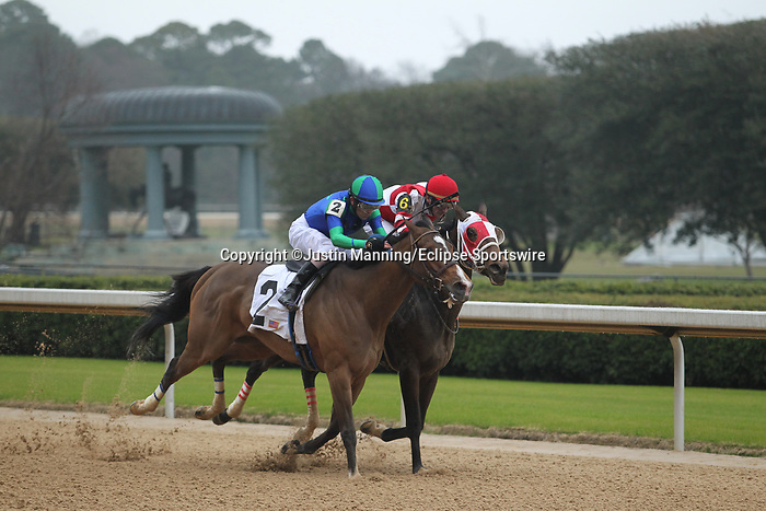 February 17, 2020: Go Google Yourself (2) with jockey Brian Hernandez Jr. aboard fighting off Whoa Nellie (6) with jockey Joseph Rocco Jr. during the Bayakoa Stakes at Oaklawn Racing Casino Resort in Hot Springs, Arkansas on Feburary 17, 2020. Justin Manning/Eclipse Sportswire/CSM