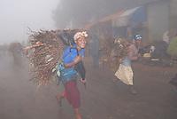 ethiopia, monti entoto, donne portatrici di legame.entoto mountain, women carring wood.
