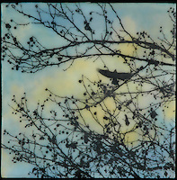 Crow over tree with berries photo transferred over encaustic painting of blue sky.