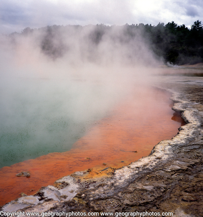 Steam rising from thermal springs of the Champagne Pool, Waiotapu, near Rotorua north island New Zealand
