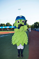 Hillsboro Hops mascot Barley before a Northwest League game against the Salem-Keizer Volcanoes at Ron Tonkin Field on September 1, 2018 in Hillsboro, Oregon. The Salem-Keizer Volcanoes defeated the Hillsboro Hops by a score of 3-1. (Zachary Lucy/Four Seam Images)