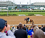 LOUISVILLE, KENTUCKY - May 02: Fans pack the bleachers to catch a glimpse of future horse racing stars as Master Plan passes by during Kentucky Derby and Oaks preparations at Churchill Downs on April 30, 2017 in Louisville, Kentucky. (Photo by Sydney Serio/Eclipse Sportswire/Getty Images)