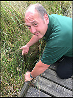 BNPs.co.uk (01202 558833)<br /> Pic: JaneRyan/NWT/BNPS<br /> <br /> Hickling Estate Worker Jon Wheeler at the site where the caterpillars were stolen from.<br /> <br /> Police are investigating after some exceptionally rare caterpillars that turn into Britain's largest butterfly were stolen from a nature reserve. <br /> <br /> Around 20 swallowtail butterfly caterpillars that were feeding on the scarce milk parsley plant were swiped from Hickling Broad in Norfolk.<br /> <br /> Brazen thieves uprooted five of the internationally protected plants in order to acquire the caterpillars and subsequent Swallowtail butterflies, which are prized by collectors. <br /> <br /> Killed and mounted examples of the beautiful creature can be worth &pound;100 while some unlawful hobbyists seek them for breeding because of their rarity.