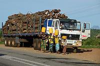 MOZAMBIQUE, Beira Corridor, timber trade of chinese companies for export to China, transport of logged trees from Tete province to harbor Beira with chines Sinotruk and chinese driver / MOSAMBIK, Beira Korridor, Holzhandel von chinesischen Firmen fuer Export nach China, chinesischer Sinotruk LKW, Transport von Baumstaemmen aus der Provinz Tete zum Hafen Beira, Kahlschlag in Mosambik, taeglich kommen hunderte Lastwagen mit Holz in Beira an