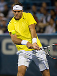 Juan Martin del Potro (ARG) defeats Tommy Haas (GER) 7-6(4), 6-3 in the Semifinals of the Citi Open in Washington, DC on August 3, 2013.
