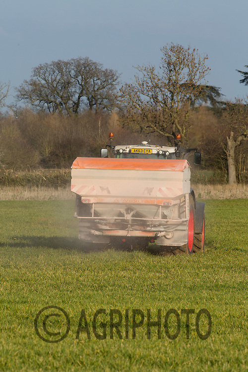 Applying potash to Winter cereals <br /> Picture Tim Scrivener 07850 303986 <br /> scrivphoto@btinternet.com<br /> &hellip;.covering agriculture in the UK&hellip;.