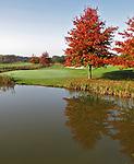 LIEREN bij Apeldoorn - Hole 18 van Golf en Businessclub  De Scherpenbergh . COPYRIGHT KOEN SUYK