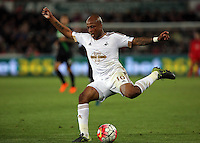 Andre Ayew of Swansea crosses the ball during the Barclays Premier League match between Swansea City and Stoke City played at the Liberty Stadium, Swansea on October 19th 2015