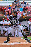 Kane County Cougars catcher Jose Queliz (18) throws down to second base between innings during game one of a Midwest League doubleheader against the Wisconsin Timber Rattlers on June 23, 2017 at Fox Cities Stadium in Appleton, Wisconsin.  Kane County defeated Wisconsin 4-3. (Brad Krause/Four Seam Images)