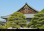 Ninomaru Palace Ohiroma Grand Hall Audience Chambers Nijo Castle Kyoto