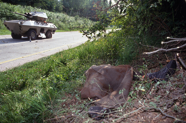 Luglio 1991, autoblindo dell'Armata Popolare Jugoslava bloccati dalla milizia slovena nella foresta di Krsko durante la guerra per l'indipendenza della Slovenia. Militare serbo ucciso nell'imboscata.<br /> July 1991, Yugoslav People's Army armored cars blocked by Slovenian militia in the forest of Krsko during  the war for independence of Slovenia. Serbian soldier  killed in the ambush.