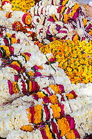 Jaipur, Rajasthan, India.  Garlands of Marigolds or other Flowers as Temple Offerings or Gifts to Brides.