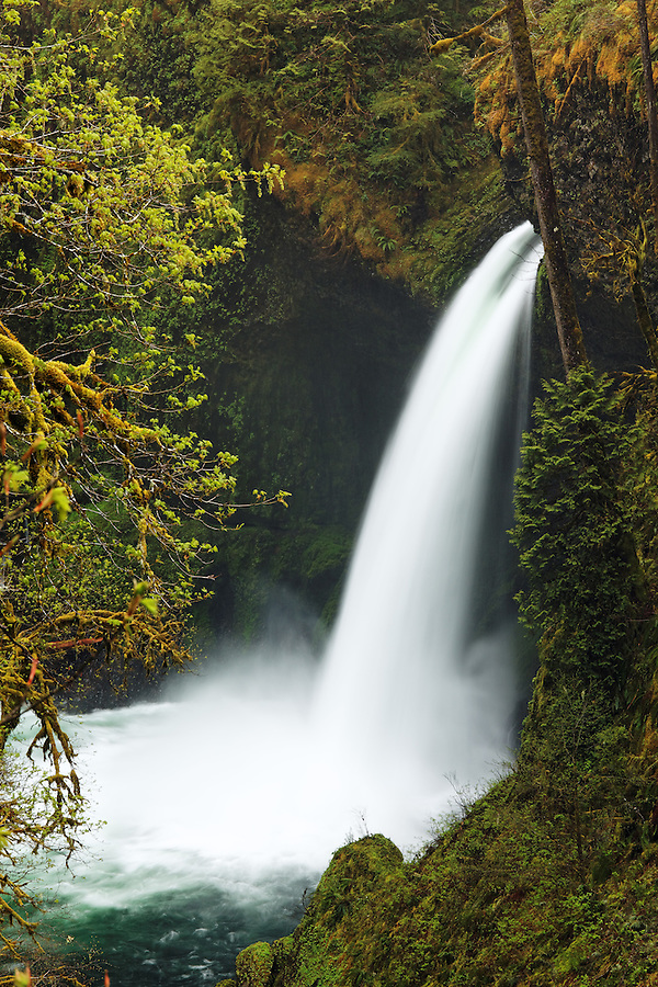 Metlako Falls, Eagle Creek Recreation Area, Columbia River Gorge National Scenic Area, Oregon, USA