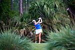 2013 W DII Golf