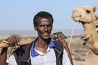 DJIBOUTI Tadjourah, Afar shepherd with camel  / DSCHIBUTI Tadjourah, Afar Hirte mit Kamel