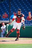 Ball State Cardinals catcher Erek Bolton (11) throws down to third base after a strikeout during a game against the Louisville Cardinals on February 19, 2017 at Spectrum Field in Clearwater, Florida.  Louisville defeated Ball State 10-4.  (Mike Janes/Four Seam Images)