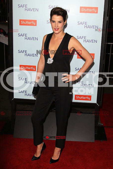 HOLLYWOOD, CA - FEBRUARY 05: Cobie Smulders at the Los Angeles Premiere 'Safe Haven' at TCL Chinese Theatre on February 5, 2013 in Hollywood, California. Credit: mpi21/MediaPunch Inc.