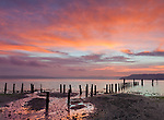 Vashon Island, Washington:<br /> Winter sunrise colors reflected in the low tide beach at Tramp Harbor