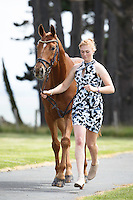 NZL-Lauren Alexander (AA BEDAZZLED) CCI1* FIRST HORSE INSPECTION: 2015 NZL-Puhinui International Three Day Event - presented by Honda NZ (Thursday 10 December: CREDIT: Libby Law COPYRIGHT: LIBBY LAW PHOTOGRAPHY