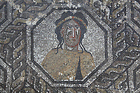 Figure in an octagon surrounded by knotwork patterns, from the Roman mosaic of the Four Seasons, in the dining room of the House of Dionysos, 3rd century AD, Volubilis, Northern Morocco. Volubilis was founded in the 3rd century BC by the Phoenicians and was a Roman settlement from the 1st century AD. Volubilis was a thriving Roman olive growing town until 280 AD and was settled until the 11th century. The buildings were largely destroyed by an earthquake in the 18th century and have since been excavated and partly restored. Volubilis was listed as a UNESCO World Heritage Site in 1997. Picture by Manuel Cohen