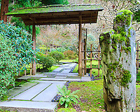 Entrance to the outer tea garden (soto roji) with stone path to machiai and large guardian (viewing) stone at entrance of wooden arch way and gates in the Portland Japanese Garden.