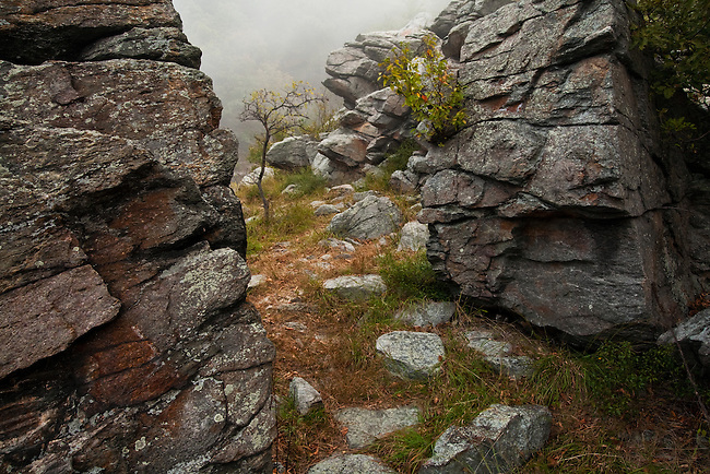 Fog and rocks at Maryland Heights, Harpers Ferry National Historical Park