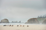 BWC Cannon Beach