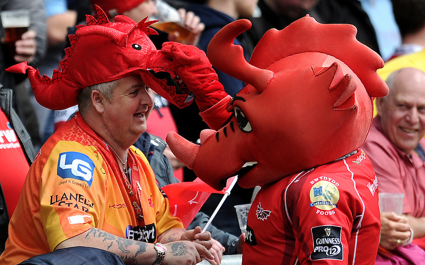 Scarlets fan has a joke with the Scarlets mascot <br /> <br /> Photographer Ashley Crowden/CameraSport<br /> <br /> Rugby Union - Guinness PRO12 Round 19 - Scarlets v Cardiff Blues - Saturday 2nd April 2016 - Parc y Scarlets, Llanelli<br /> <br /> &copy; CameraSport - 43 Linden Ave. Countesthorpe. Leicester. England. LE8 5PG - Tel: +44 (0) 116 277 4147 - admin@camerasport.com - www.camerasport.com