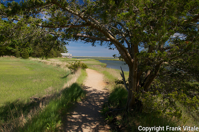 Nauset Marsh Trail, Cape Cod National Seashore, Eastham, MA