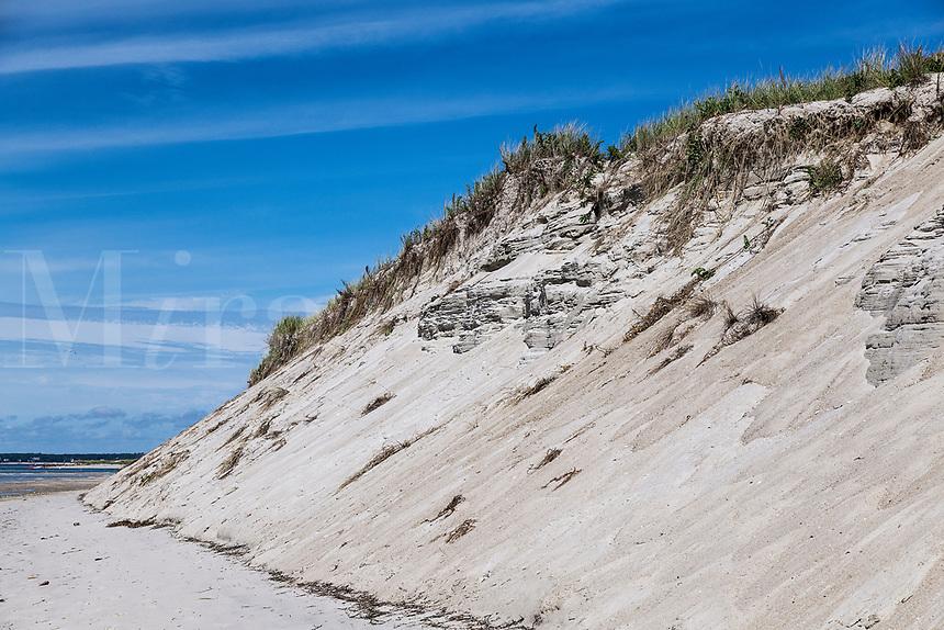 Dune erosion due to coastal storm damage, Chatham, Cape Cod, Massachusetts, USA.