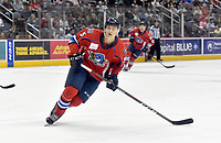 HERSHEY, PA - DECEMBER 01: Springfield Thunderbirds center Henrik Borgstrom (5) skates in the offensive zone during the Springfield Thunderbirds at Hershey Bears on December 1, 2018 at the Giant Center in Hershey, PA. (Photo by Randy Litzinger/Icon Sportswire)
