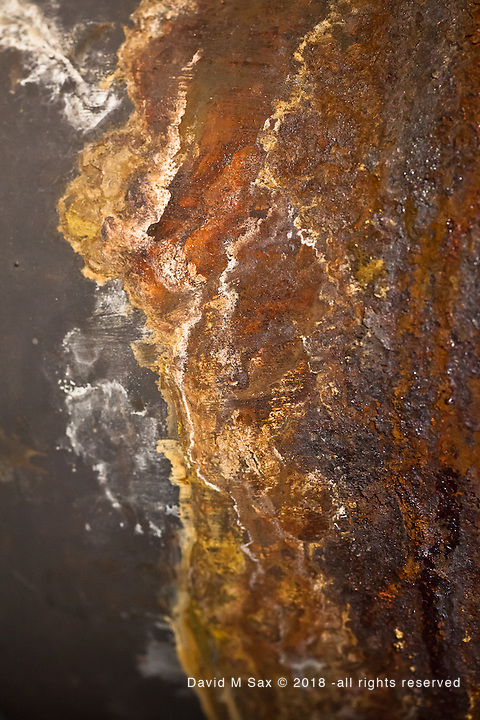 12.19.11 - Oxidation Coast...