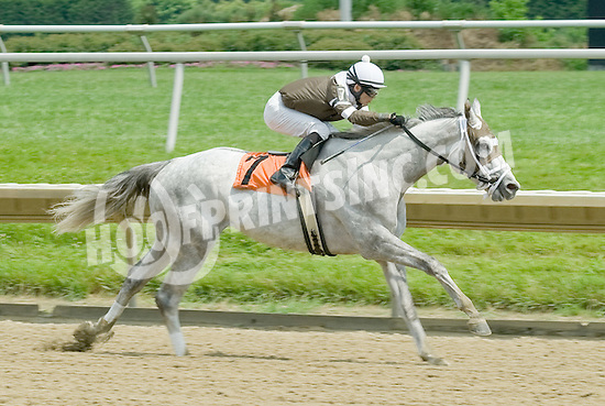 Tempted to Tapit winning at Delaware Park on 6/13/11