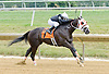 Bellissima Luna winning at Delaware Park on 7/23/12
