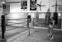 Il pugile Gianluca Mannarino durante un allenamento nella palesta   A.S. Boxe Champion Club di Acilia di Marcello Paciucci