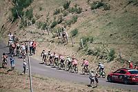 dropped group up the Montée de Naves d'Aubrac (Cat1/1058m/8.9km/6.4%)<br /> <br /> 104th Tour de France 2017<br /> Stage 15 - Laissac-Sévérac l'Église › Le Puy-en-Velay (189km)