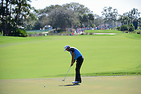Graeme McDowell (IRL) watches his putt on 2 during round 3 of the Honda Classic, PGA National, Palm Beach Gardens, West Palm Beach, Florida, USA. 2/25/2017.<br /> Picture: Golffile | Ken Murray<br /> <br /> <br /> All photo usage must carry mandatory copyright credit (&copy; Golffile | Ken Murray)