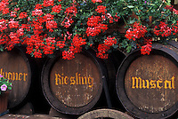 France, Alsace, Bas-Rhin, Europe, wine region, Red geraniums decorate large wooden wine barrels in the wine region of Alsace.
